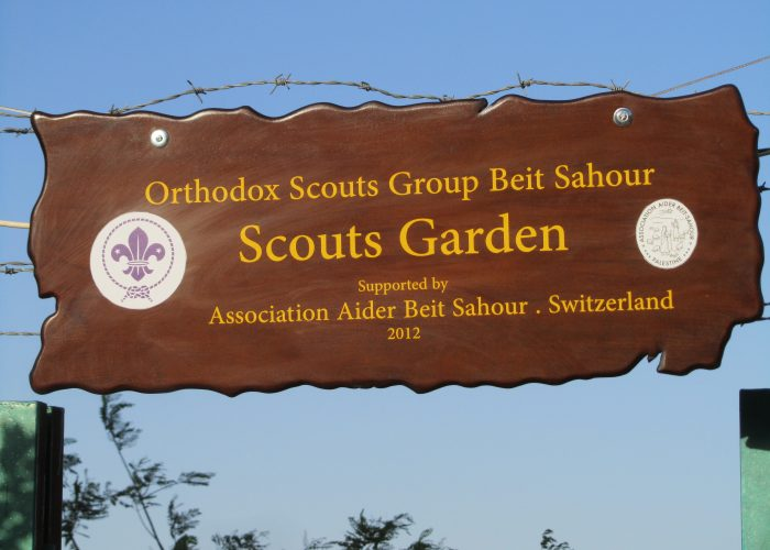 scouts_05